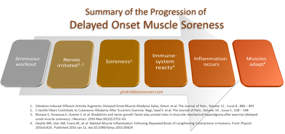 Delayed Onset Muscle Soreness Graphic