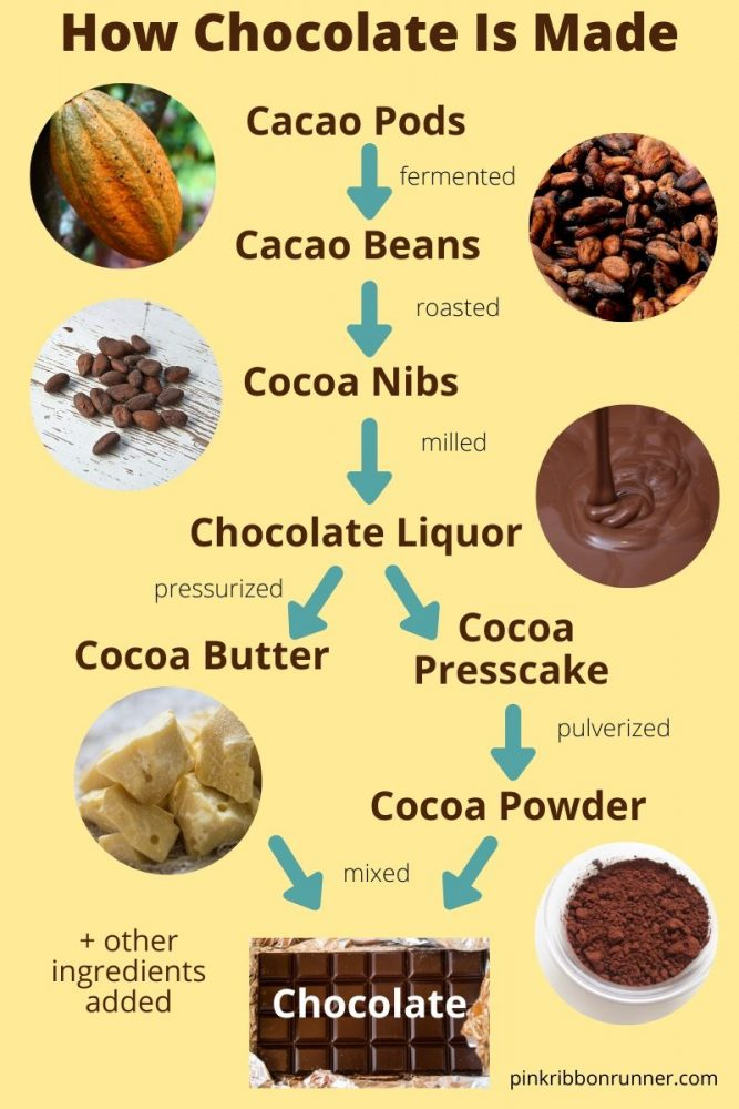 The Truth about Chocolate and Cancer